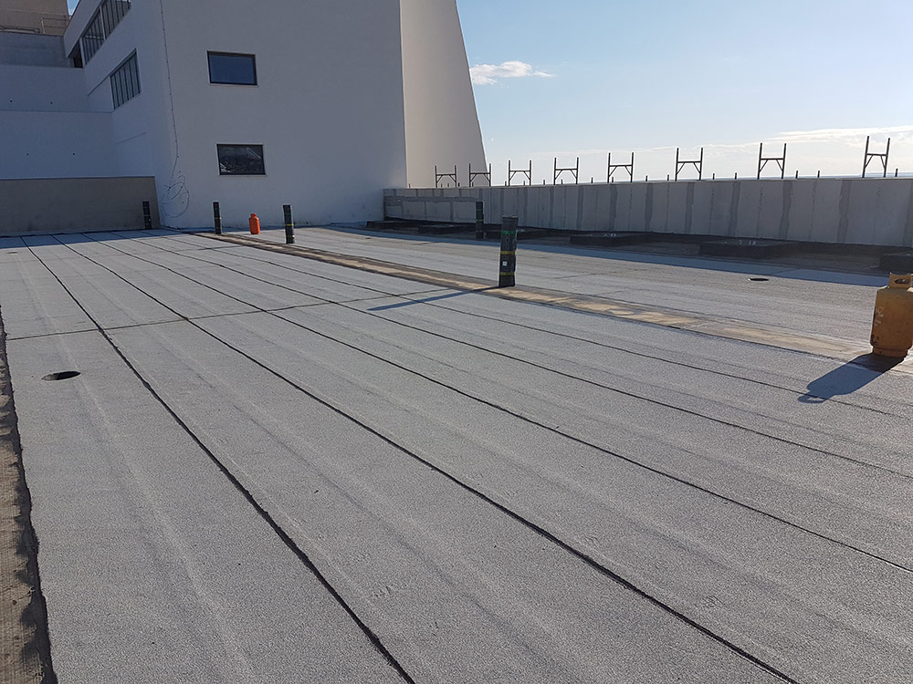 parklane roof 2