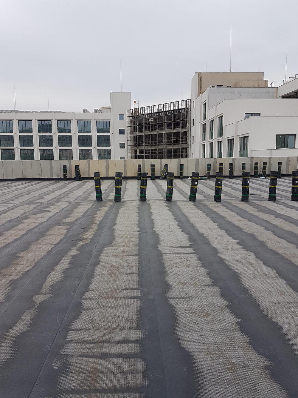 parklane roof 3